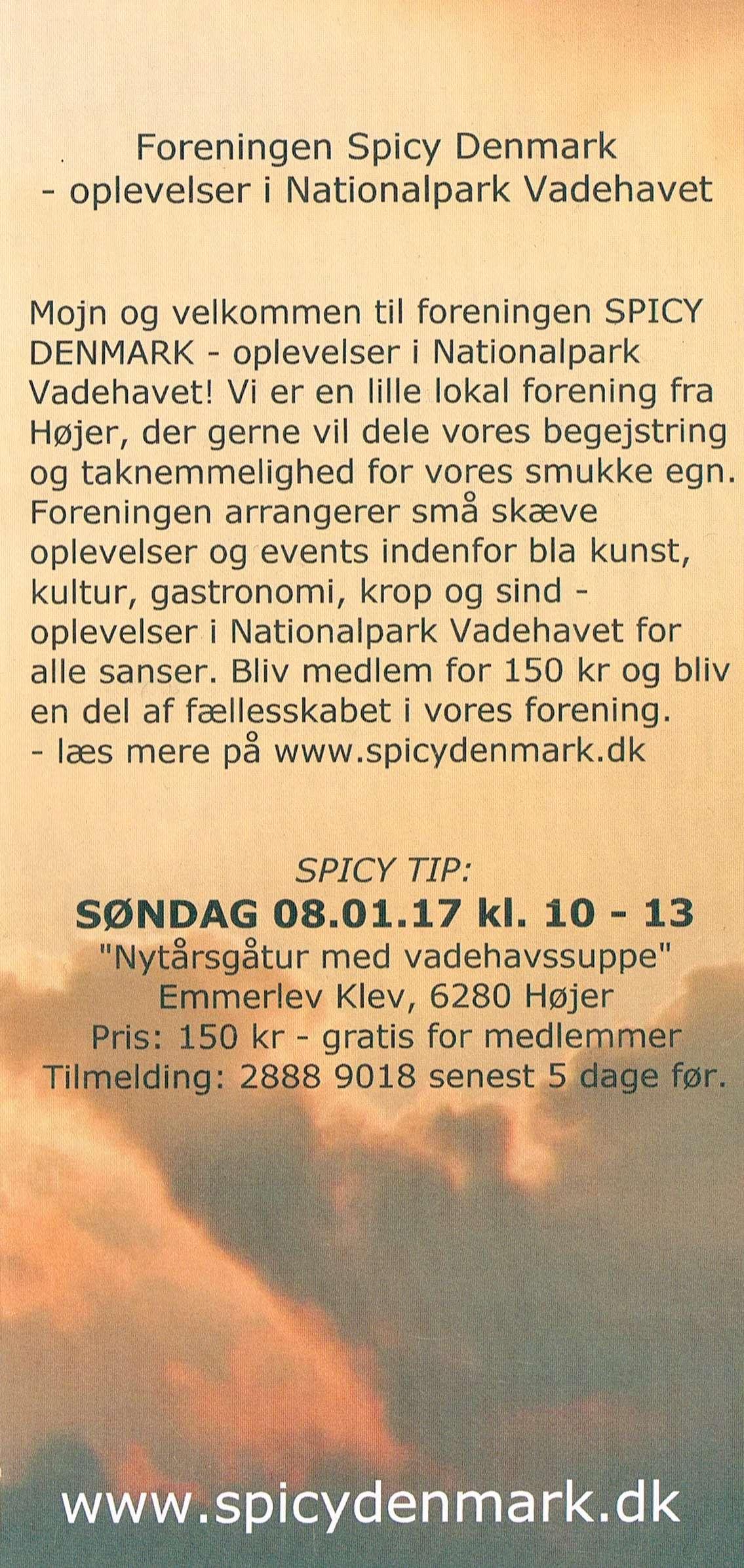 spicydenmark